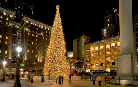 10 Places To Go During Winter Break in the Bay Area