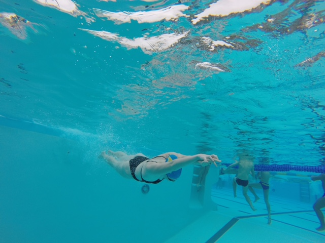 Diving into a Wet Season
