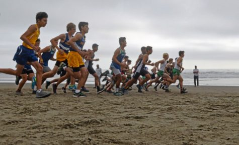 Cross Country Team Preview