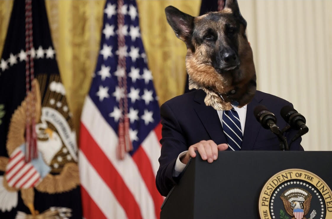 Exclusive Interview with Joe Biden's Dog